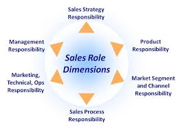 Graphic image depicting sales force roles and dimensions in a software or hardware company