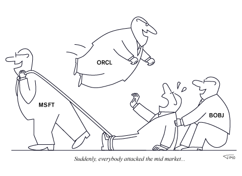 Cartoon image questioning how great is it to be a midmarket software or hardware company