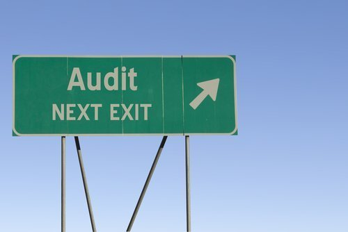 The Operational and Marketing Audit at Software Companies